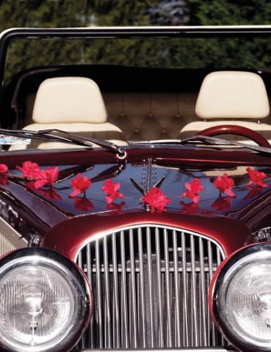 Elegante Autodekoration lässt den Oldtimer in voller Pracht erstrahlen